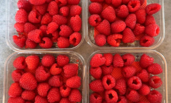 Fresh raspberries for chia seed jam